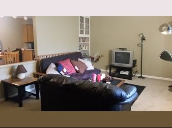 Room for the summer available near CSU