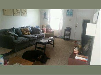 EasyRoommate US - roommate wanted - Northeast, Columbus Area - $375 pcm