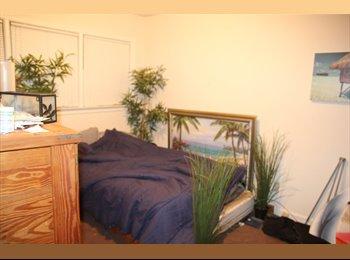 EasyRoommate US - Brookhaven room for rent asap! - Sandy Springs / Dunwoody, Atlanta - $450 pcm