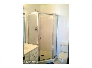 Clean, professional female seeking roommate