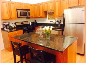 Roommate wanted (July 1st) Lincoln PArk