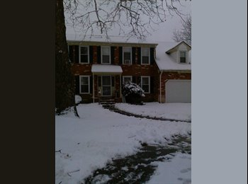 EasyRoommate US - Furnished Room for Rent (close to interstate and bases) - Norfolk, Norfolk - $650 pcm