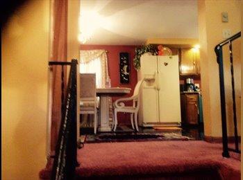 EasyRoommate US - Hyde Park Basement - Hyde Park, Boston - $1,000 pcm