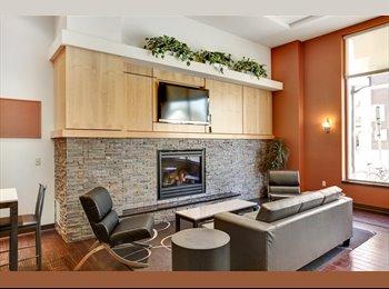 EasyRoommate US - Sydney Hall Residences 2 Bed, 2 Bath Home - University, Minneapolis / St Paul - $869 pcm
