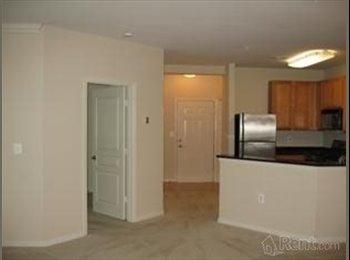 EasyRoommate US - $925 Master Bedroom with Private Bath Utilities In - Arlington, Arlington - $925 pcm