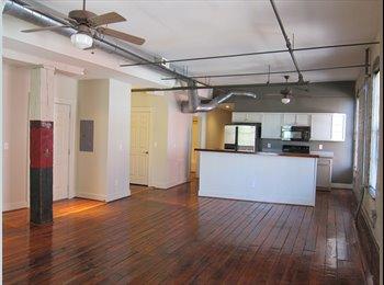 EasyRoommate US - Roommate wanted for historic downtown 2 bedroom! - Winston Salem, Winston Salem - $675 pcm