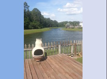 EasyRoommate US - **FURNISHED ROOM FOR RENT** Beautiful water view in Wesley Chapel - New Tampa, Tampa - $500 pcm