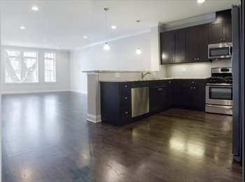EasyRoommate US - Sweet-Ass Apt - North Center, Chicago - $1,100 pcm