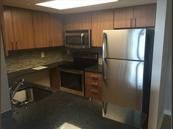 Room in NEW 2BR right by Court House Metro