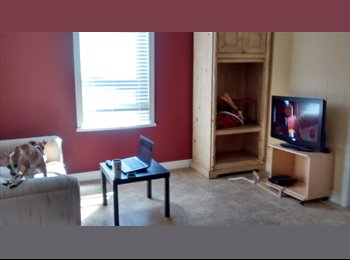 Looking for a non-smoking roommate