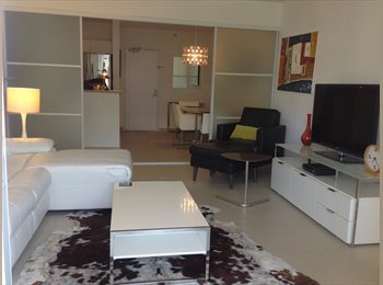 EasyRoommate US - Flamingo a South Beach Resort Compex - South Beach, Miami - $3,500 pcm