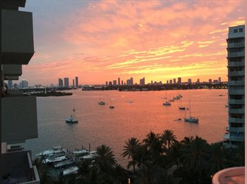 EasyRoommate US - Flamingo South Beach Resort Complex - Miami Beach, Miami - $4,500 pcm