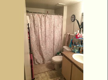 Room for rent for fall and spring 2015-2016! 579$ per...