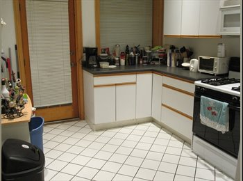 EasyRoommate US - Roommate wanted in a great neighboorhood! - Lakeview, Chicago - $387 pcm