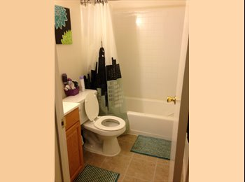EasyRoommate US - Room available  - Gloucester, South Jersey - $500 pcm
