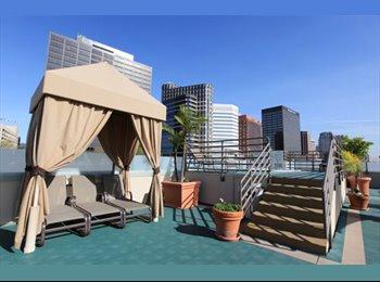 Full Furnished Luxury Apartment