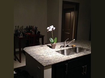 EasyRoommate US - Spring Valley and Greenville Luxury Apartment - Other Dallas, Dallas - $830 pcm