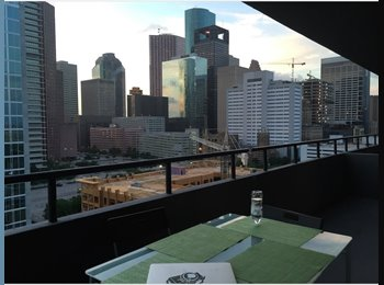 EasyRoommate US - single bedroom in a beautiful high-rise - Downtown, Houston - $850 pcm
