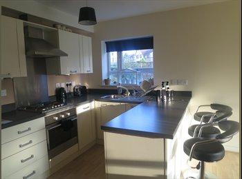 EasyRoommate UK - double room to rent - Ashton-Under-Lyne, Tameside - £360 pcm