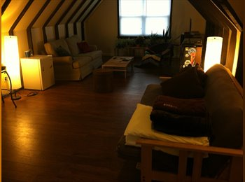 EasyRoommate US - Large house with awesome roommates - Pittsburgh Eastside, Pittsburgh - $430 pcm