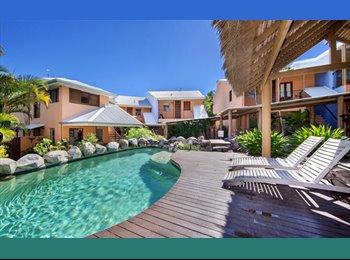 EasyRoommate AU - Touch of Paradise - Noosa Heads, Sunshine Coast - $290 pw