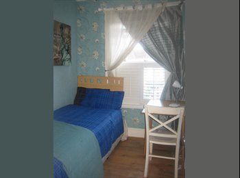 Gorgeous Single Room- Zone 4 - Available NOW