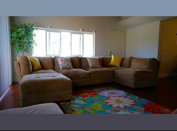 Room Perfect for SDSU Students