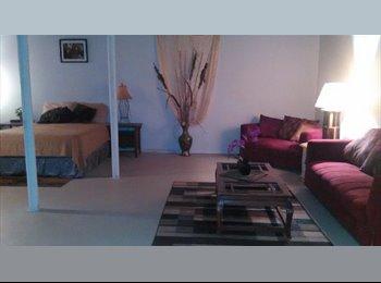 Basement loft-like apt. & 2 rooms