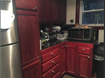 2 bedroom 1 bath apartment in lakeview
