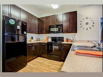 EasyRoommate US - College Vue Apartment $535 - Pensacola, Other-Florida - $535 pcm