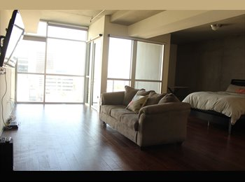 Luxury 1br/1bath loft in downtown Las Vegas!