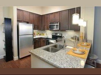 EasyRoommate US - Entreprenuer / Creative type - Orlando - Orange County, Orlando Area - $675 pcm