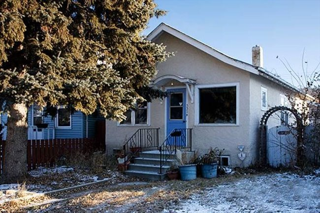 Room for rent in Saskatoon - Shared Accomodation BRIGHT BEAUTIFUL HOUSE!   - Image 1