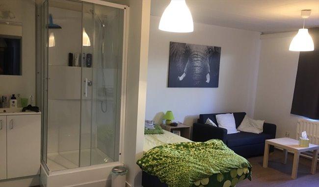 Koten te huur in leuven louvain gerenoveerde kamer met leuke sfeer en fiets parking tuin - Kamer sfeer ...