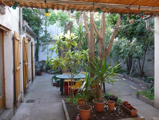 Colocation montpellier chambre dans maison avec jardin - Maison jardin condominium montpellier ...