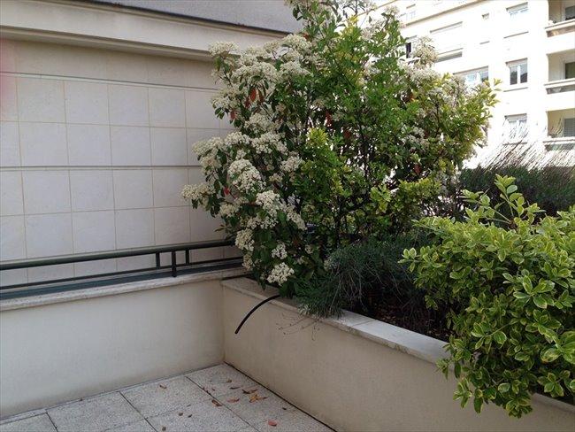 Colocation meudon appartement 100 m2 avec terrasse et for Cherche appartement avec jardin