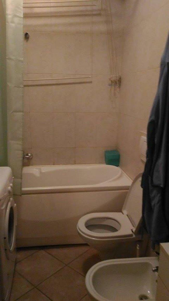 Stanze e posti letto in affitto bologna posto letto in for Affitto stanza bologna