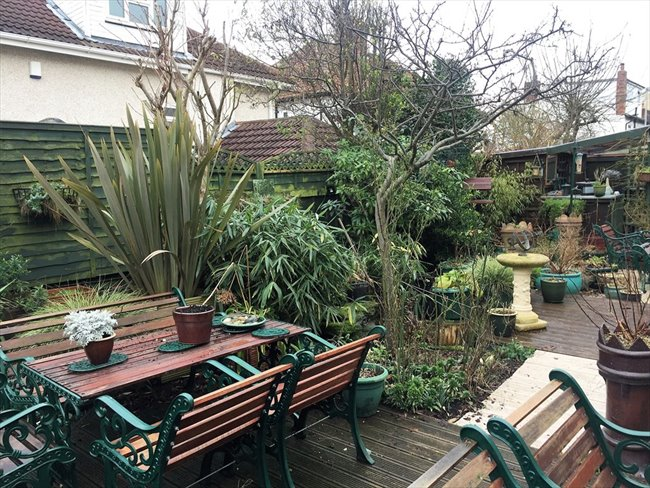Room to rent in Moortown - Beautiful Brand New Houseshare in Moortown - Image 4