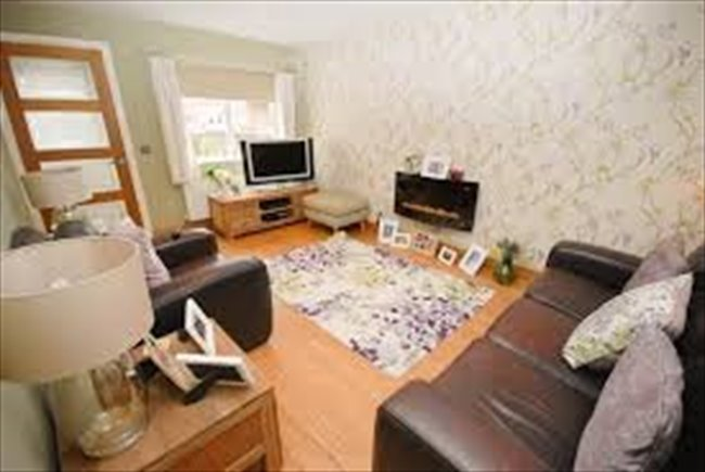 Room to rent in Sunderland - Room to let in 4 bedroom house on Roker Marina - Image 3