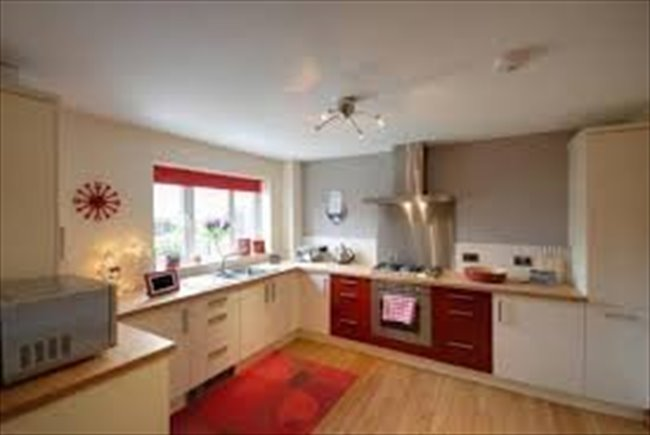 Room to rent in Sunderland - Room to let in 4 bedroom house on Roker Marina - Image 4
