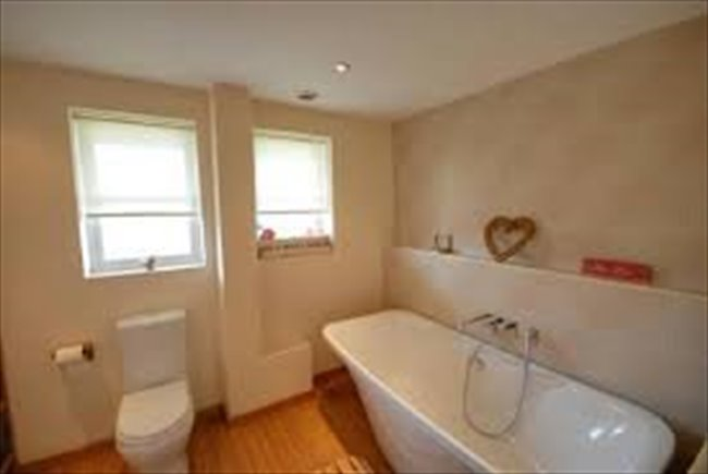 Room to rent in Sunderland - Room to let in 4 bedroom house on Roker Marina - Image 7