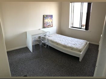 EasyRoommate AU - Perfect location! 3 minute walk to tram/bus stop. 15 min to CBD or Flinders Uni on public transport!, Ashford - $170 pw