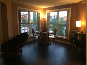 EasyRoommate CA - Oliver Edmonton- roommate required to share beautiful condo, Edmonton - $800 pcm