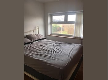 EasyRoommate IE - Trinity Student   Looking for A flatmate. Student or professional , Dublin - €500 pcm