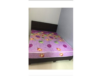 EasyRoommate SG - Common room rental/Flat for sharing, Punggol - $700 pm