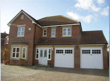 EasyRoommate UK - Luxury Detached House to share in Kingswood, Hull, Kingswood - £400 pcm