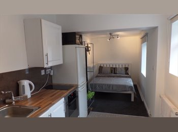 EasyRoommate UK - Totally refurbished house, Speedwell - £550 pcm