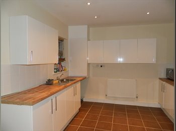 EasyRoommate UK - well positioned property in Whitley Bay, North Shields - £350 pcm
