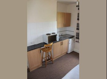 EasyRoommate UK - All Inclusive Single Room in Golden Triangle, Norwich - £300 pcm
