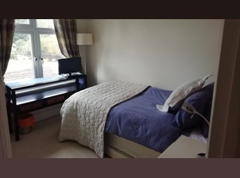 EasyRoommate UK - Modern Double Room with own Shower Room Near Maidstone Town, Maidstone - £500 pcm